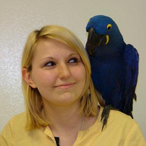 Vogelkundiger Tierarzt Nadine Wagner